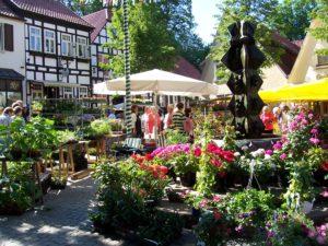 Geranienmarkt Original